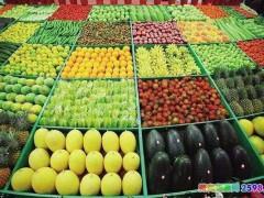 水果微商代理在哪里进货如何发货